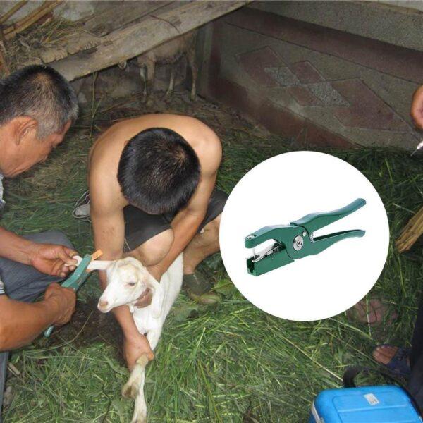 Animal ear tag pliers