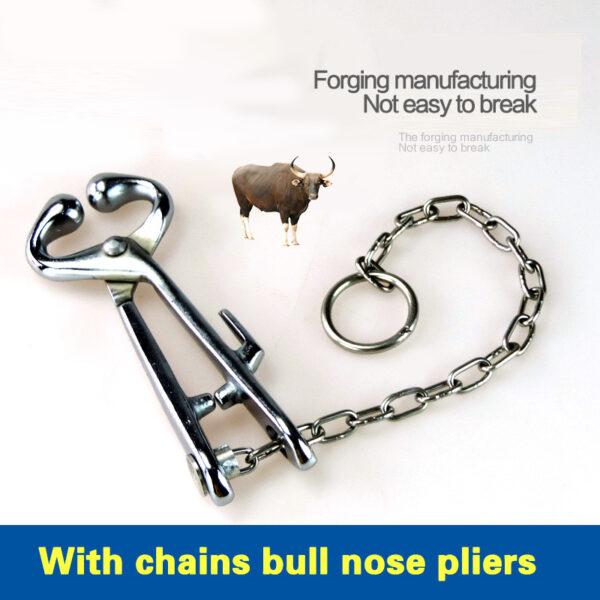 Stainless Steel Cattle Nasal Forceps