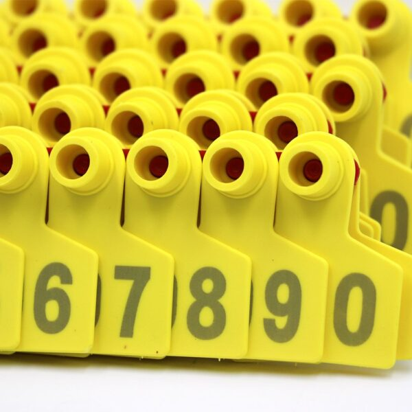 Yellow Animal ear tags